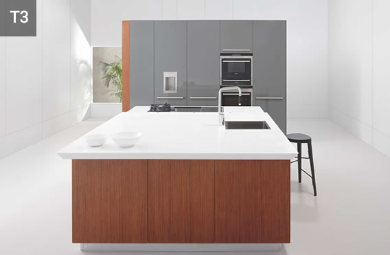 T3 Modern Kitchen
